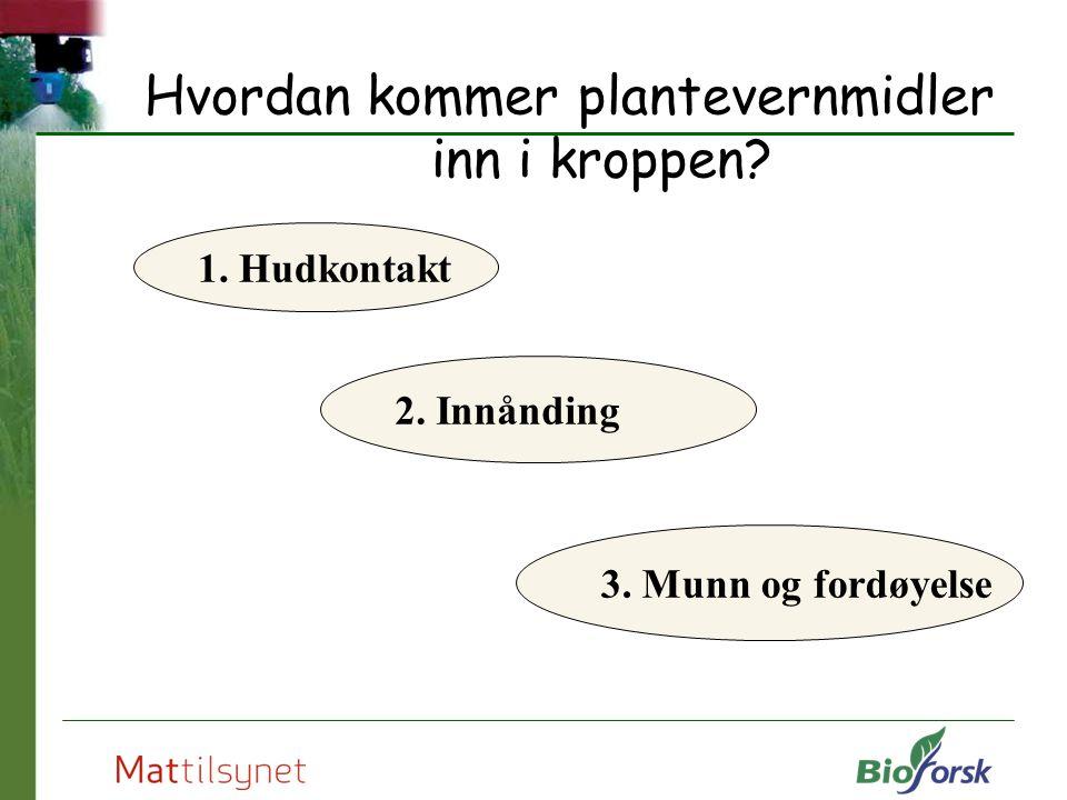 Hvordan kommer plantevernmidler inn i kroppen? 1. Hudkontakt 2. Innånding 3. Munn og fordøyelse