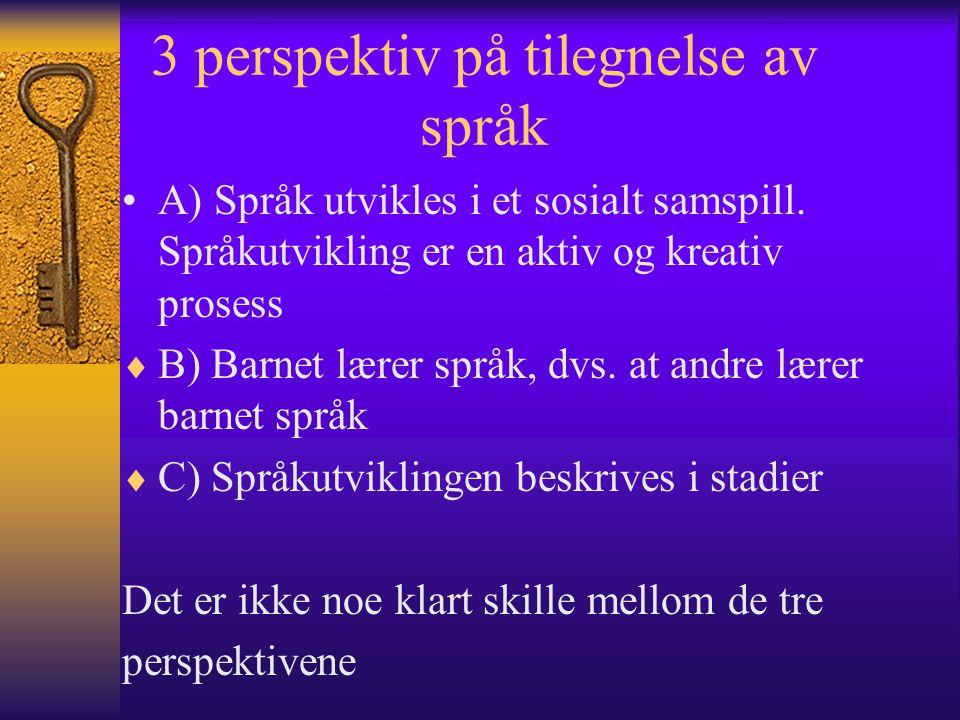3 perspektiv på tilegnelse av språk A) Språk utvikles i et sosialt samspill.