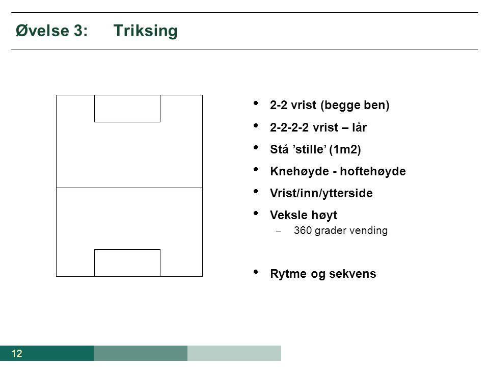 12 Øvelse 3:Triksing  2-2 vrist (begge ben)  2-2-2-2 vrist – lår  Stå 'stille' (1m2)  Knehøyde - hoftehøyde  Vrist/inn/ytterside  Veksle høyt 