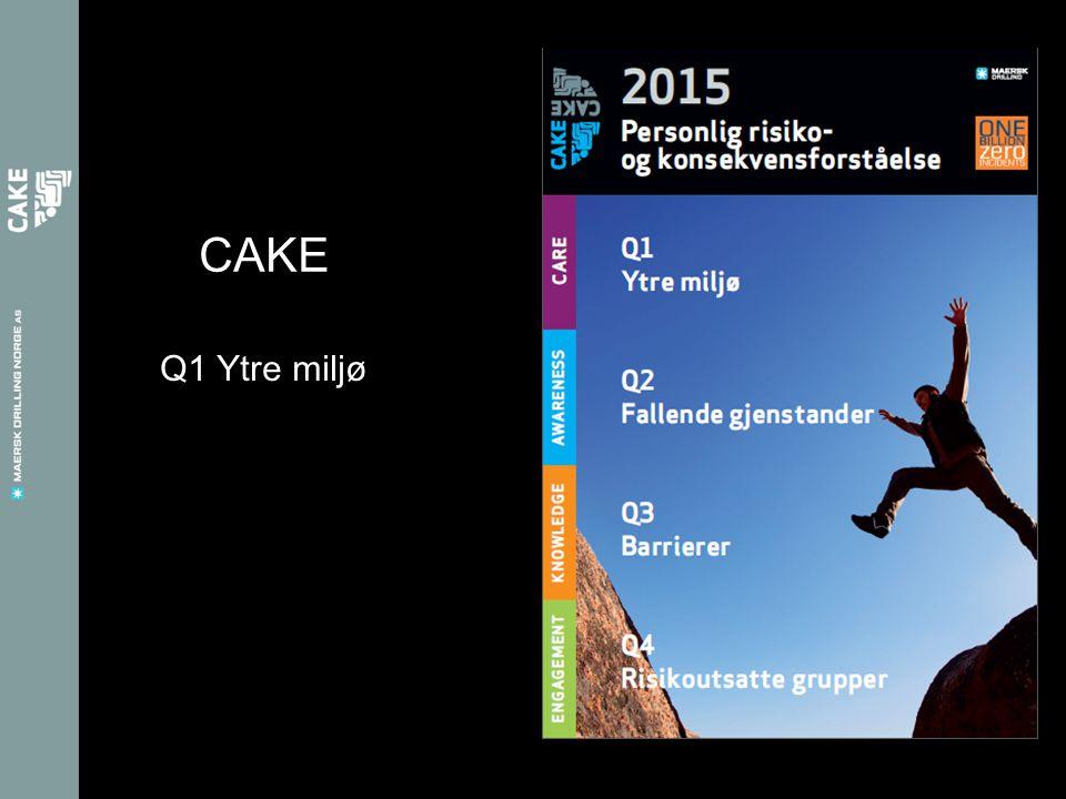Q1 Ytre miljø CAKE