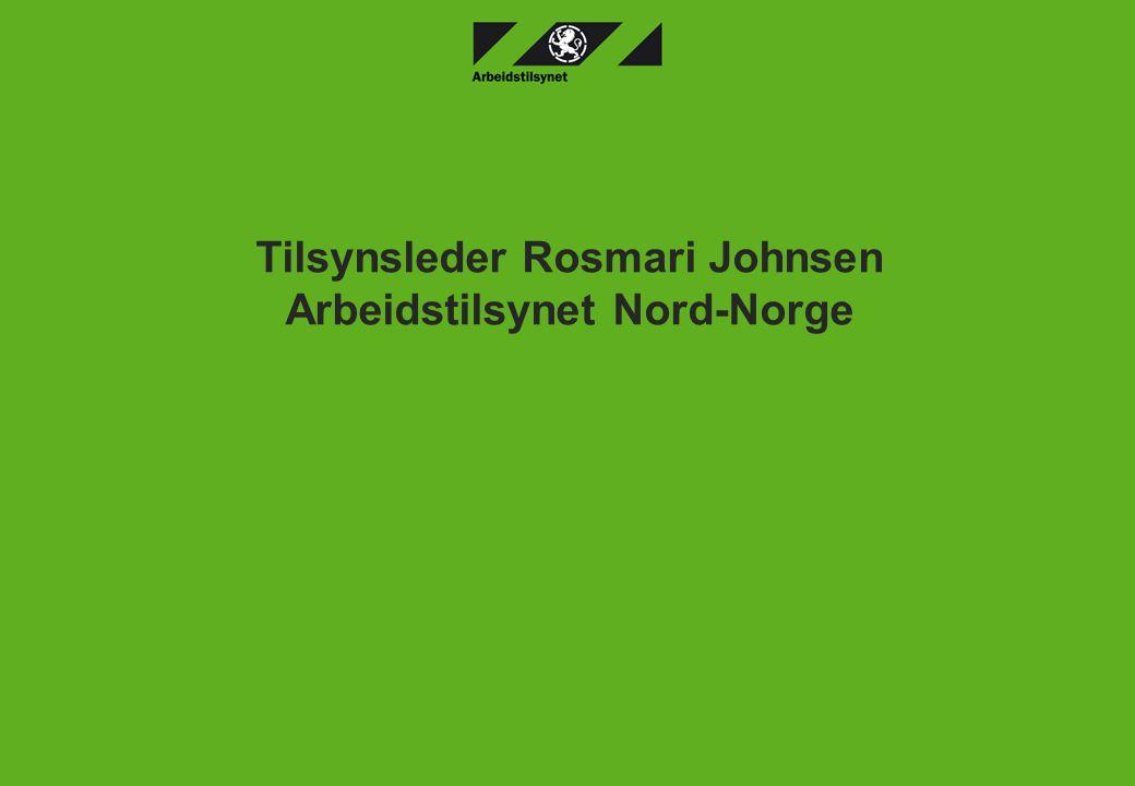 Arbeidstilsynet31.05.06 3 Bestillinga Hva skal til for å oppfylle arbeidsmiljølovens krav i forhold psykososialt arbeidsmiljø.