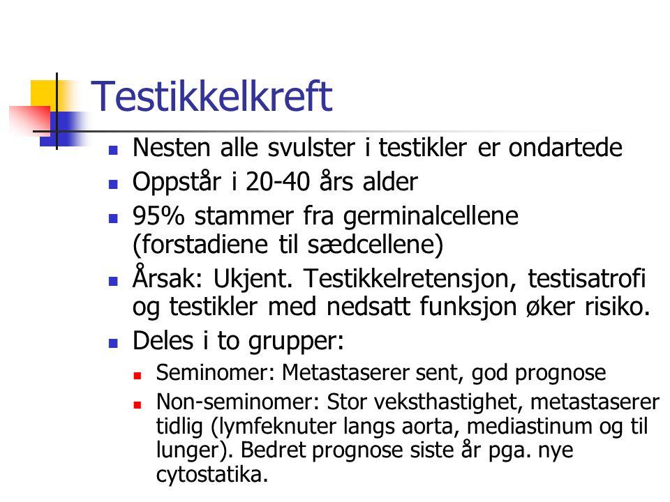 Testikkelkreft Nesten alle svulster i testikler er ondartede Oppstår i 20-40 års alder 95% stammer fra germinalcellene (forstadiene til sædcellene) År