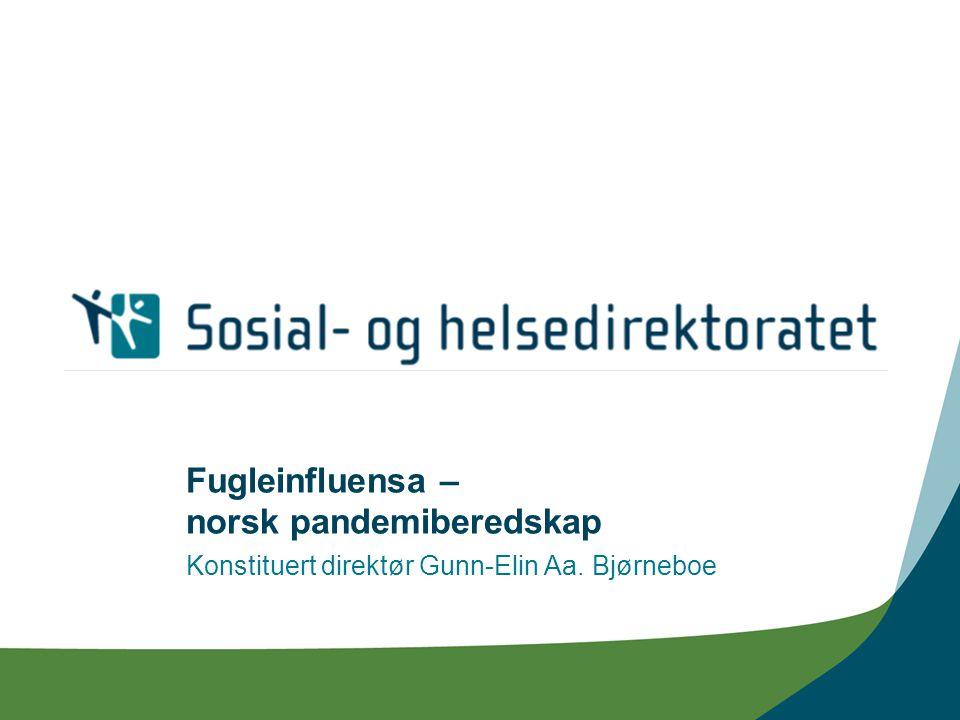 Fugleinfluensa – norsk pandemiberedskap Konstituert direktør Gunn-Elin Aa. Bjørneboe