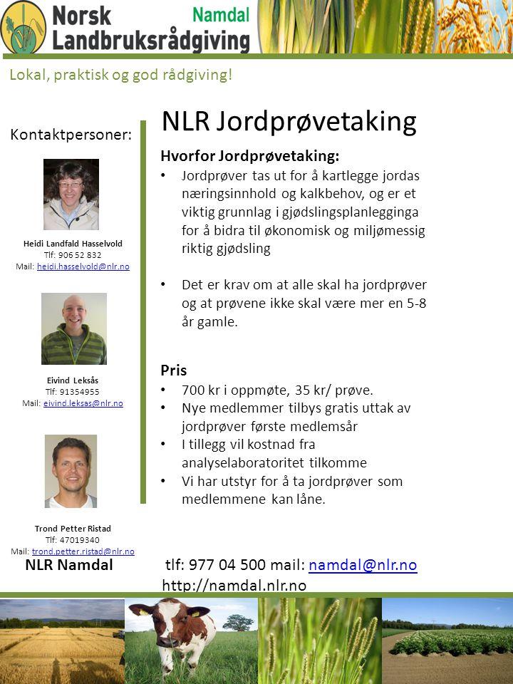 Kontaktpersoner: Heidi Landfald Hasselvold Tlf: 906 52 832 Mail: heidi.hasselvold@nlr.noheidi.hasselvold@nlr.no Eivind Leksås Tlf: 91354955 Mail: eivi