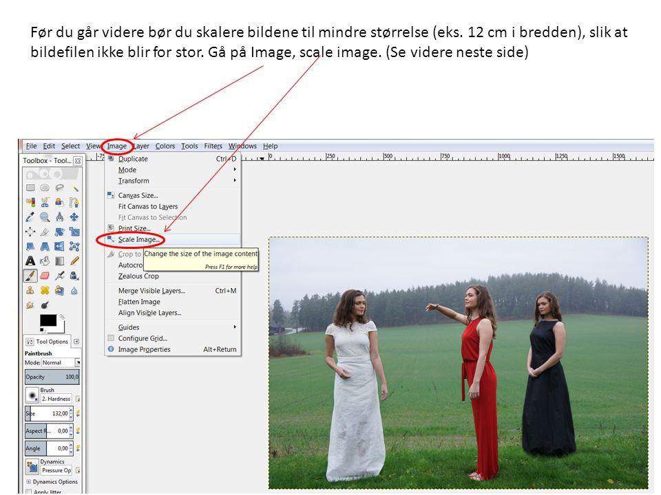 Før du går videre bør du skalere bildene til mindre størrelse (eks. 12 cm i bredden), slik at bildefilen ikke blir for stor. Gå på Image, scale image.