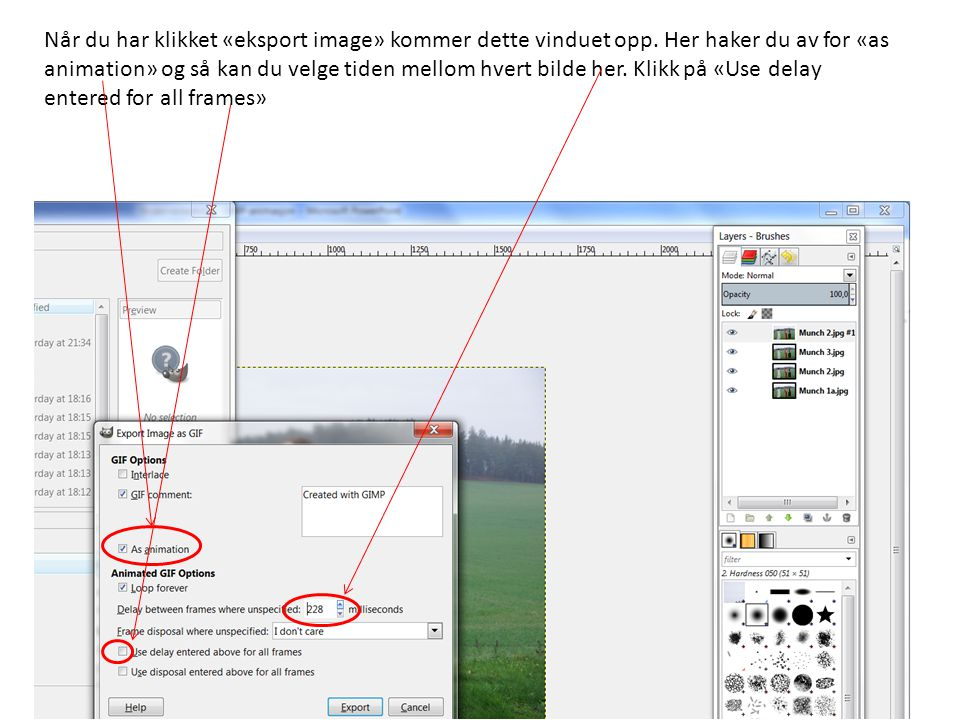 Når du har klikket «eksport image» kommer dette vinduet opp. Her haker du av for «as animation» og så kan du velge tiden mellom hvert bilde her. Klikk