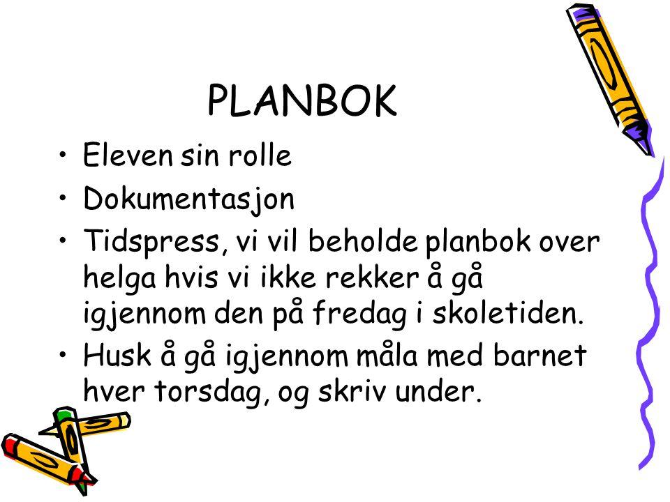 PLANBOK Eleven sin rolle Dokumentasjon Tidspress, vi vil beholde planbok over helga hvis vi ikke rekker å gå igjennom den på fredag i skoletiden. Husk