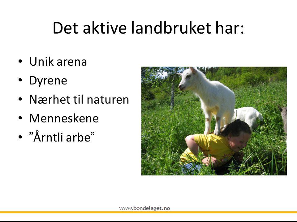 Det aktive landbruket har: Unik arena Dyrene Nærhet til naturen Menneskene Årntli arbe