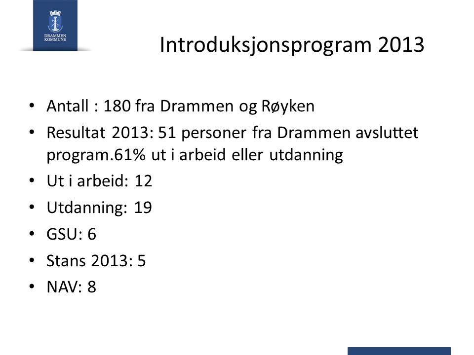 Introduksjonsprogram 2013 Antall : 180 fra Drammen og Røyken Resultat 2013: 51 personer fra Drammen avsluttet program.61% ut i arbeid eller utdanning Ut i arbeid: 12 Utdanning: 19 GSU: 6 Stans 2013: 5 NAV: 8
