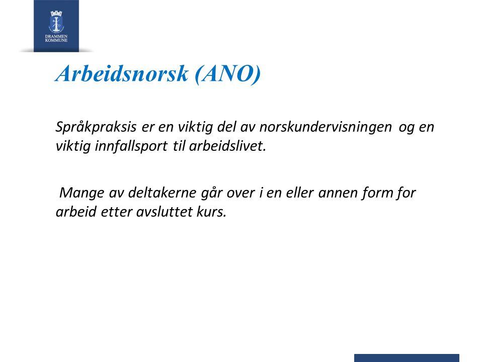 Arbeidsnorsk (ANO) Språkpraksis er en viktig del av norskundervisningen og en viktig innfallsport til arbeidslivet.