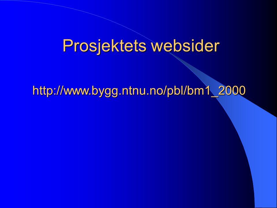 Prosjektets websider http://www.bygg.ntnu.no/pbl/bm1_2000