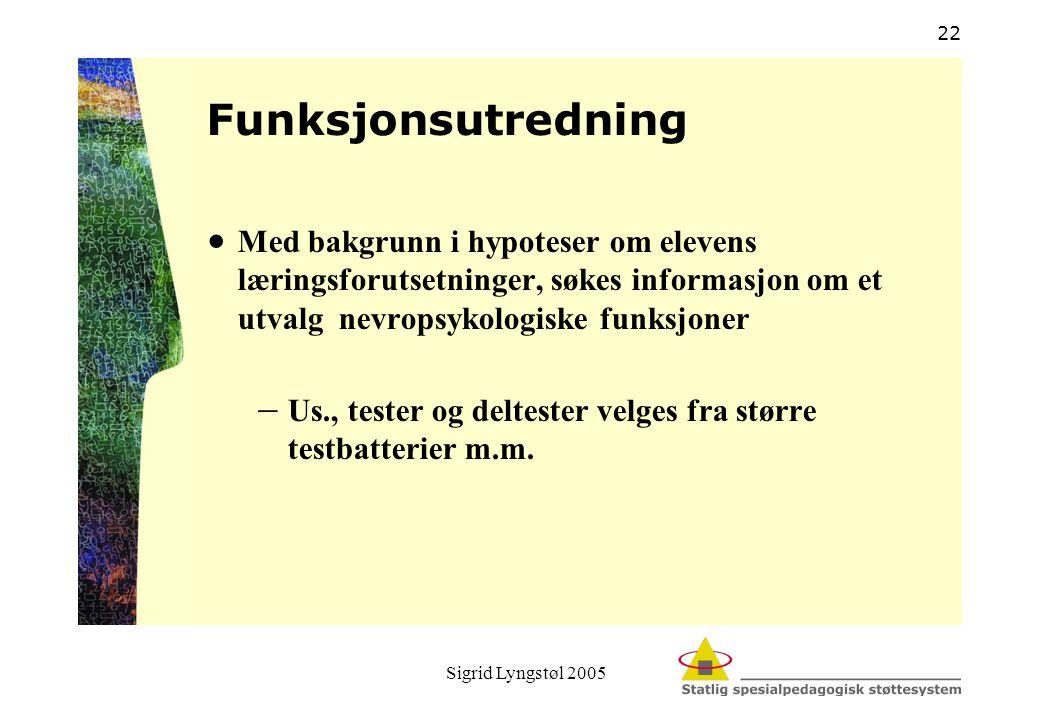 Sigrid Lyngstøl 2005 22 Funksjonsutredning  Med bakgrunn i hypoteser om elevens læringsforutsetninger, søkes informasjon om et utvalg nevropsykologis