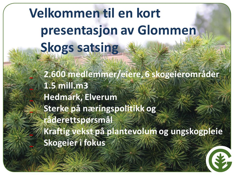 Velkommen til en kort presentasjon av Glommen Skogs satsing - 2.600 medlemmer/eiere, 6 skogeierområder - 1.5 mill.m3 - Hedmark, Elverum - Sterke på næ