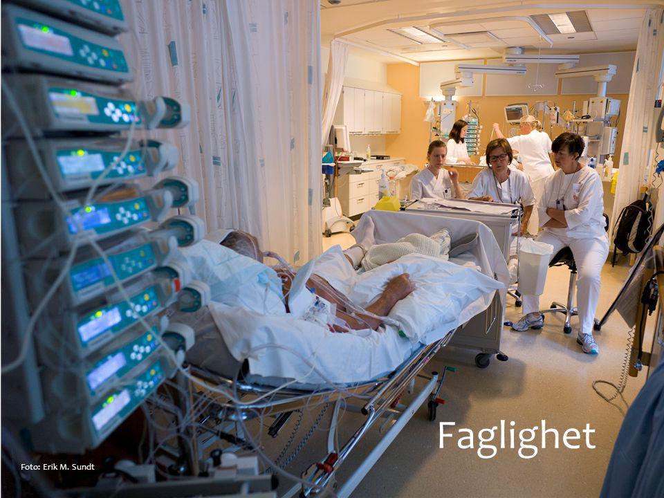 Faglighet Foto: Erik M. Sundt