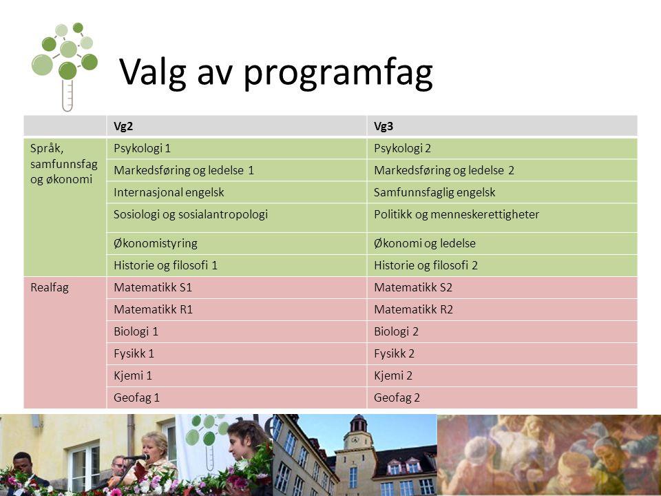 Antall programfag Du skal velge 3 programfag i Vg2, i tillegg til matematikk enten som programfag (S1 eller R1) eller som fellesfag (2P) To av fagene må være gjennomgående fag innenfor ditt programområde.