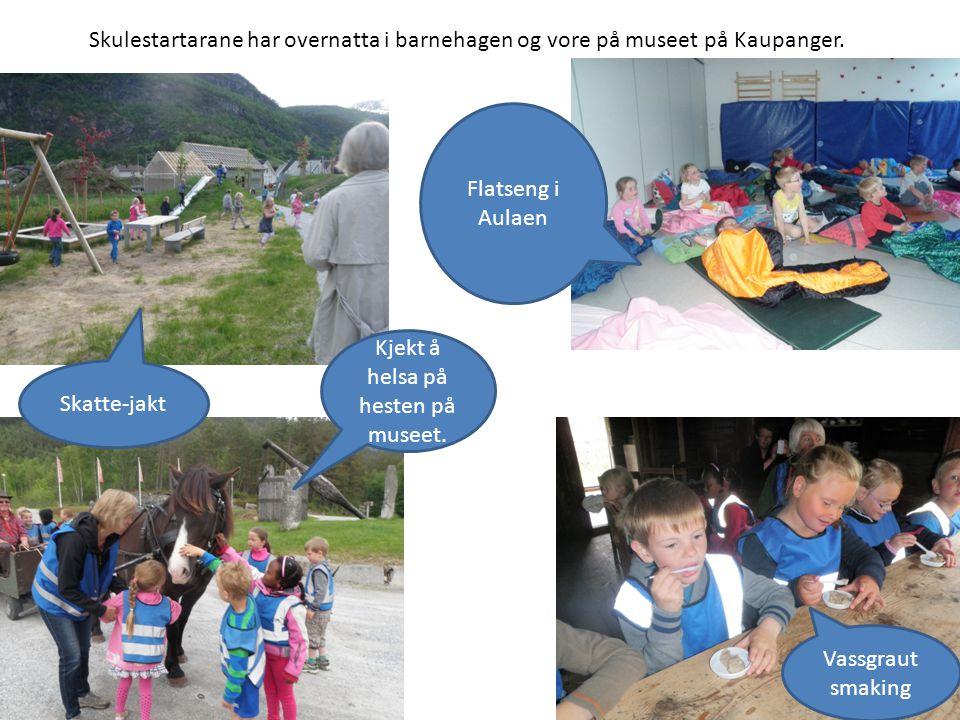 Skulestartarane har overnatta i barnehagen og vore på museet på Kaupanger.
