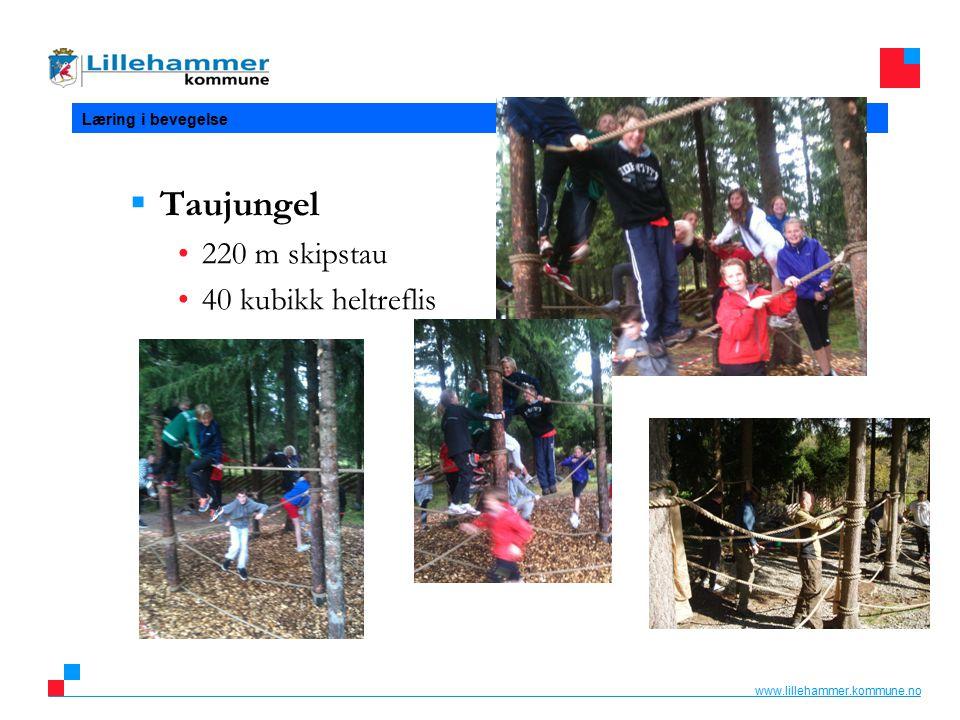 www.lillehammer.kommune.no Læring i bevegelse  Taujungel 220 m skipstau 40 kubikk heltreflis
