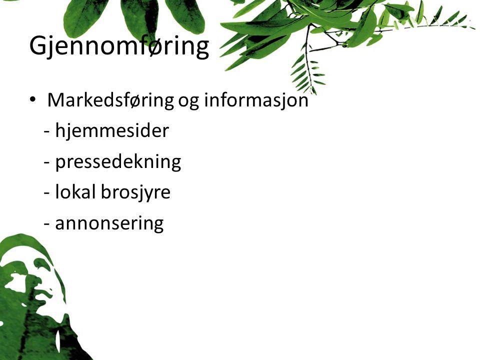 Gjennomføring Markedsføring og informasjon - hjemmesider - pressedekning - lokal brosjyre - annonsering