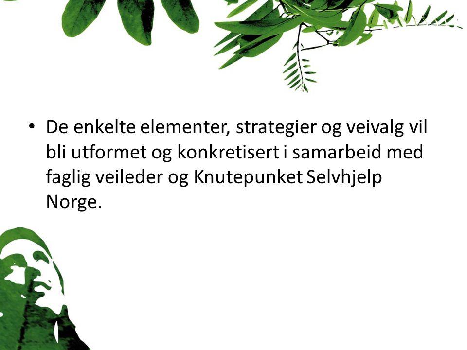 De enkelte elementer, strategier og veivalg vil bli utformet og konkretisert i samarbeid med faglig veileder og Knutepunket Selvhjelp Norge.