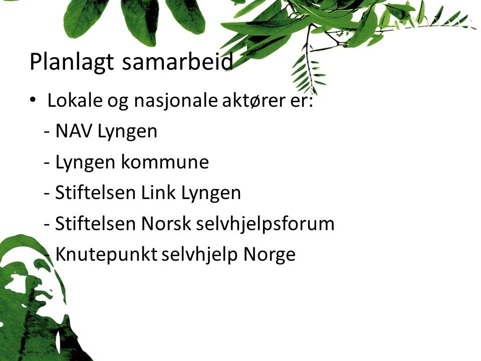 Planlagt samarbeid Lokale og nasjonale aktører er: - NAV Lyngen - Lyngen kommune - Stiftelsen Link Lyngen - Stiftelsen Norsk selvhjelpsforum - Knutepunkt selvhjelp Norge