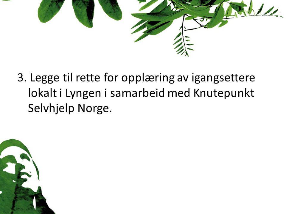 3. Legge til rette for opplæring av igangsettere lokalt i Lyngen i samarbeid med Knutepunkt Selvhjelp Norge.