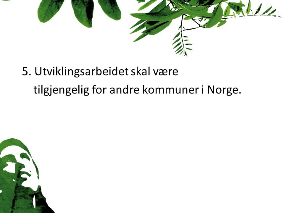 5. Utviklingsarbeidet skal være tilgjengelig for andre kommuner i Norge.