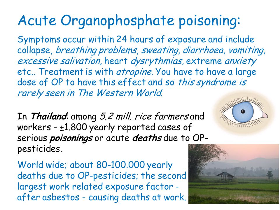 Acute Organophosphate poisoning: Symptoms occur within 24 hours of exposure and include collapse, breathing problems, sweating, diarrhoea, vomiting, e