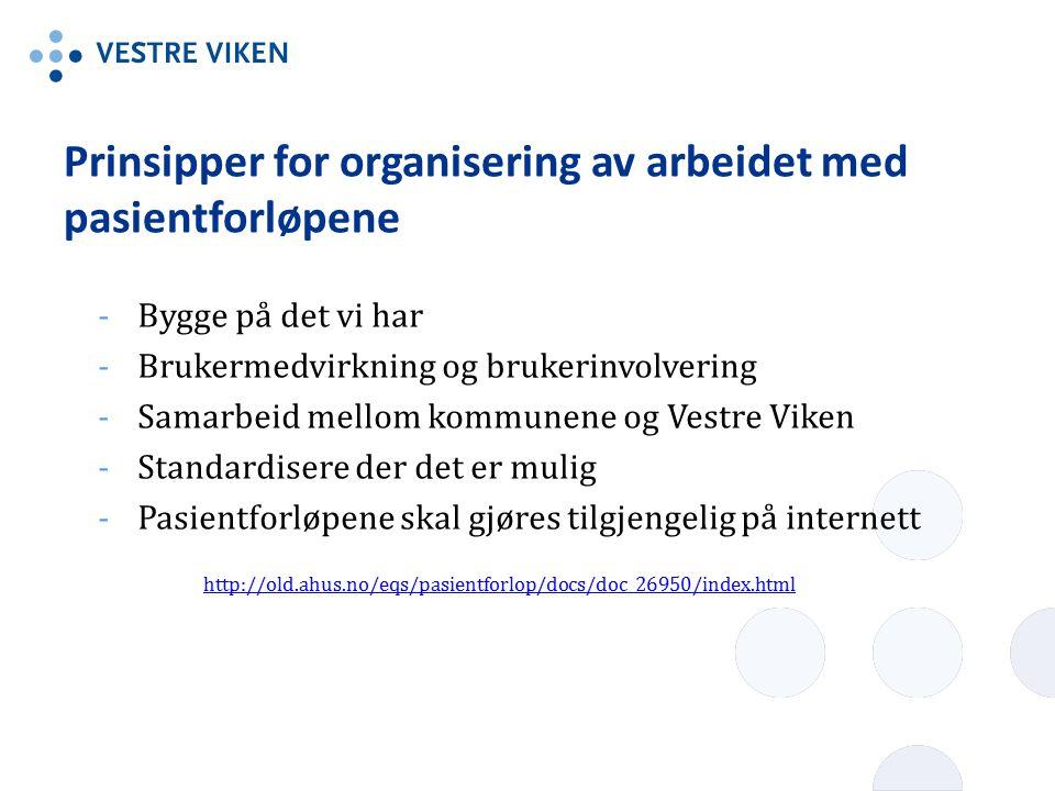 Prinsipper for organisering av arbeidet med pasientforløpene -Bygge på det vi har -Brukermedvirkning og brukerinvolvering -Samarbeid mellom kommunene