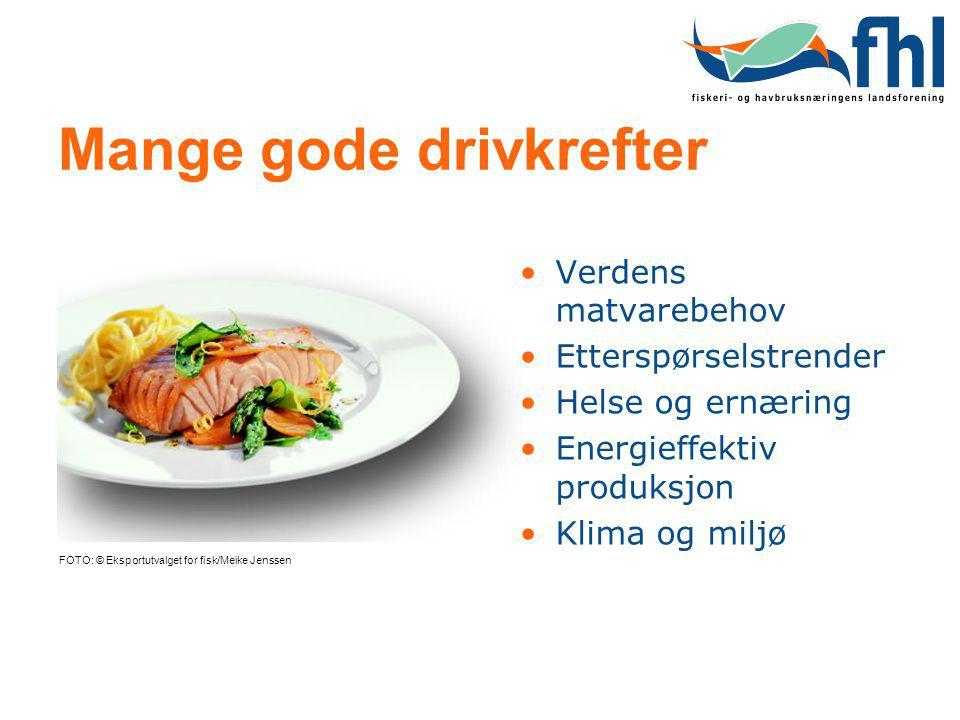 Mange gode drivkrefter FOTO: © Eksportutvalget for fisk/Meike Jenssen Verdens matvarebehov Etterspørselstrender Helse og ernæring Energieffektiv produ