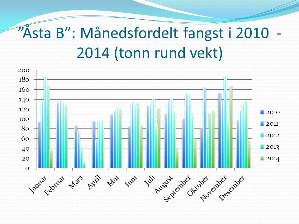 Åsta B : Månedsfordelt fangst i 2010 - 2014 (tonn rund vekt)