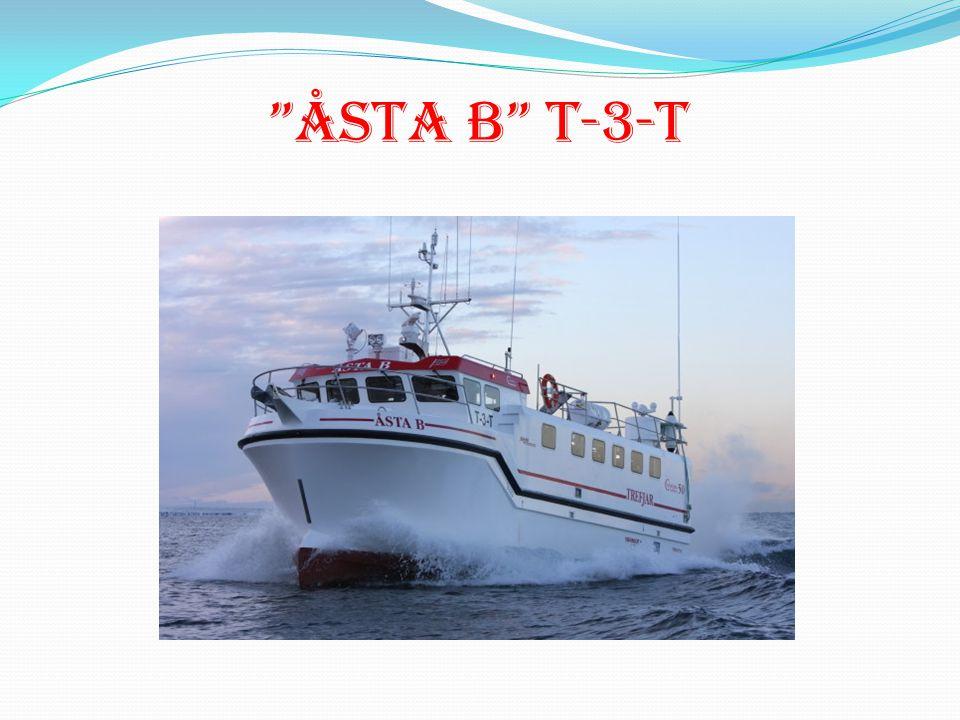 ÅSTA B T-3-T
