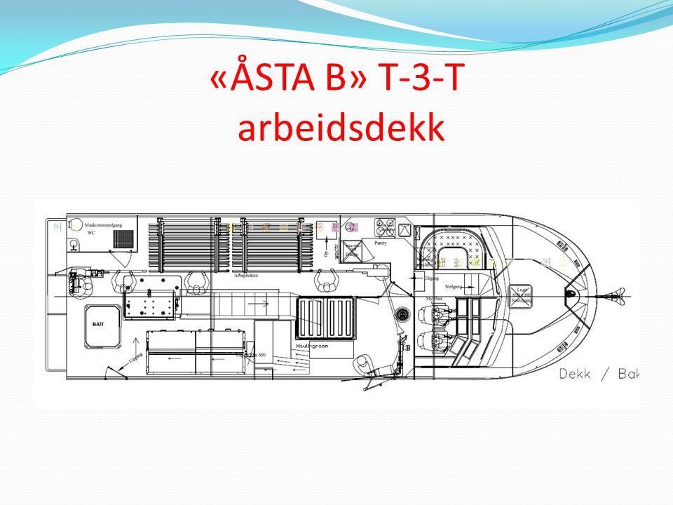 «ÅSTA B» T-3-T arbeidsdekk