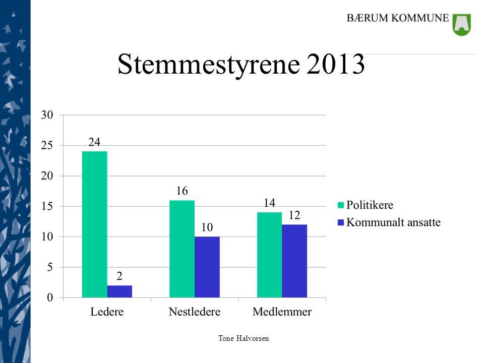 Tone Halvorsen Stemmestyrene 2013
