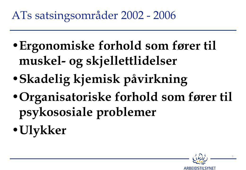 1 ATs satsingsområder 2002 - 2006 Ergonomiske forhold som fører til muskel- og skjellettlidelser Skadelig kjemisk påvirkning Organisatoriske forhold som fører til psykososiale problemer Ulykker