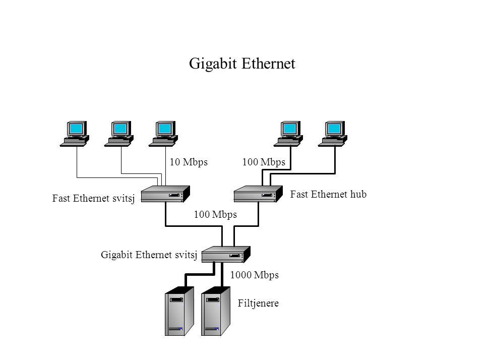 Gigabit Ethernet Fast Ethernet svitsj 10 Mbps100 Mbps Filtjenere 1000 Mbps Gigabit Ethernet svitsj Fast Ethernet hub