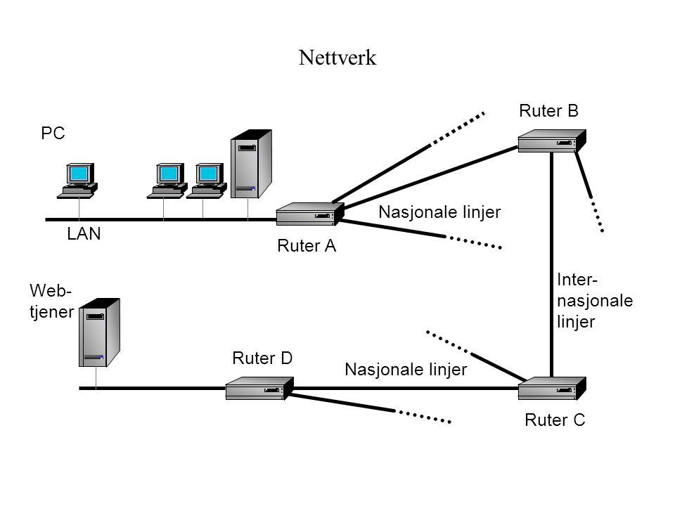 Nettverk LAN Ruter A Nasjonale linjer Ruter B Ruter C Ruter D Nasjonale linjer Inter- nasjonale linjer Web- tjener PC
