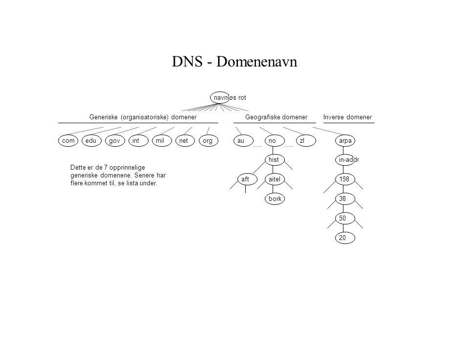 bork DNS - Domenenavn..... comeduorggovintmilnetzlnoau..... hist aitel arpa in-addr aft 38 20 158 50 navnløs rot Generiske (organisatoriske) domenerGe