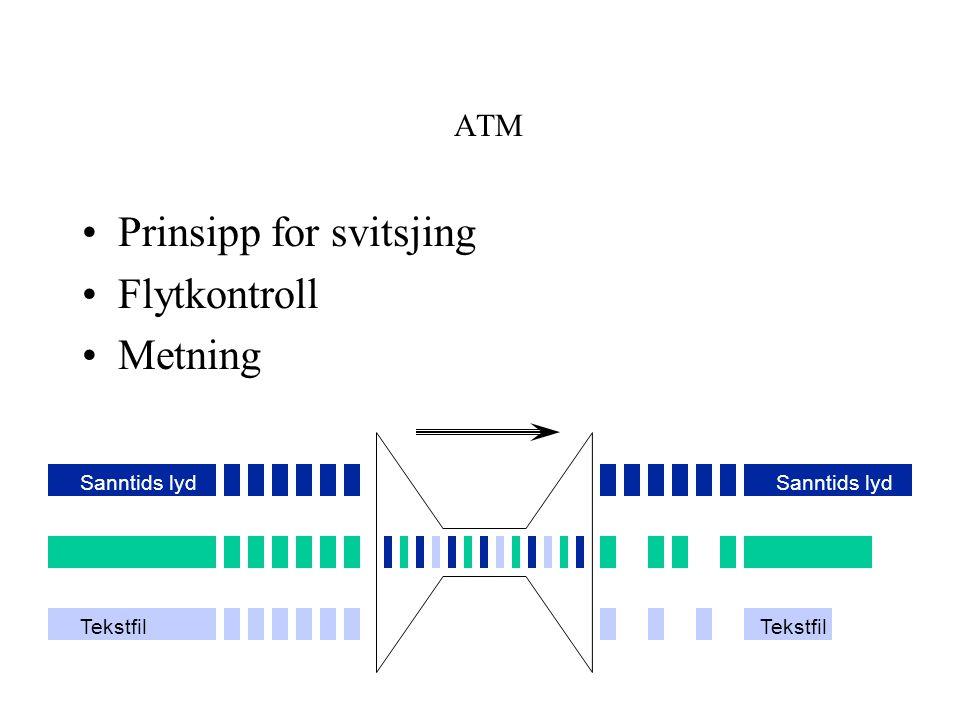 ATM Prinsipp for svitsjing Flytkontroll Metning Sanntids lyd Tekstfil Sanntids lyd