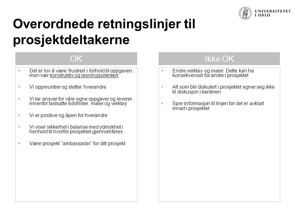Overordnede retningslinjer til prosjektdeltakerne OKIkke OK Endre verktøy og maler. Dette kan ha konsekvenser for andre i prosjektet Alt som blir disk