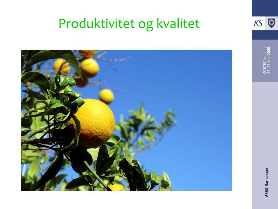 ASSS Barnehage KOSTRA-samling 25.-26. mai 2009 Produktivitet og kvalitet