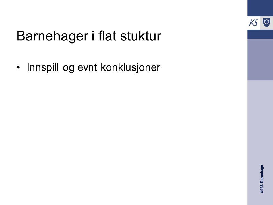 ASSS Barnehage Barnehager i flat stuktur Innspill og evnt konklusjoner