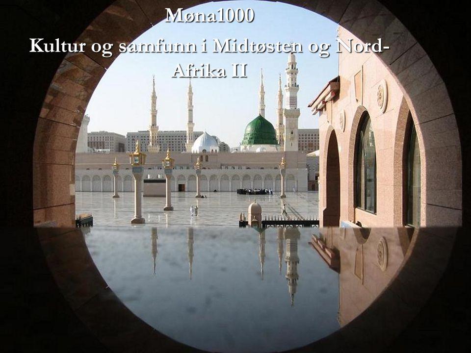 Møna1000 Kultur og samfunn i Midtøsten og Nord- Afrika II