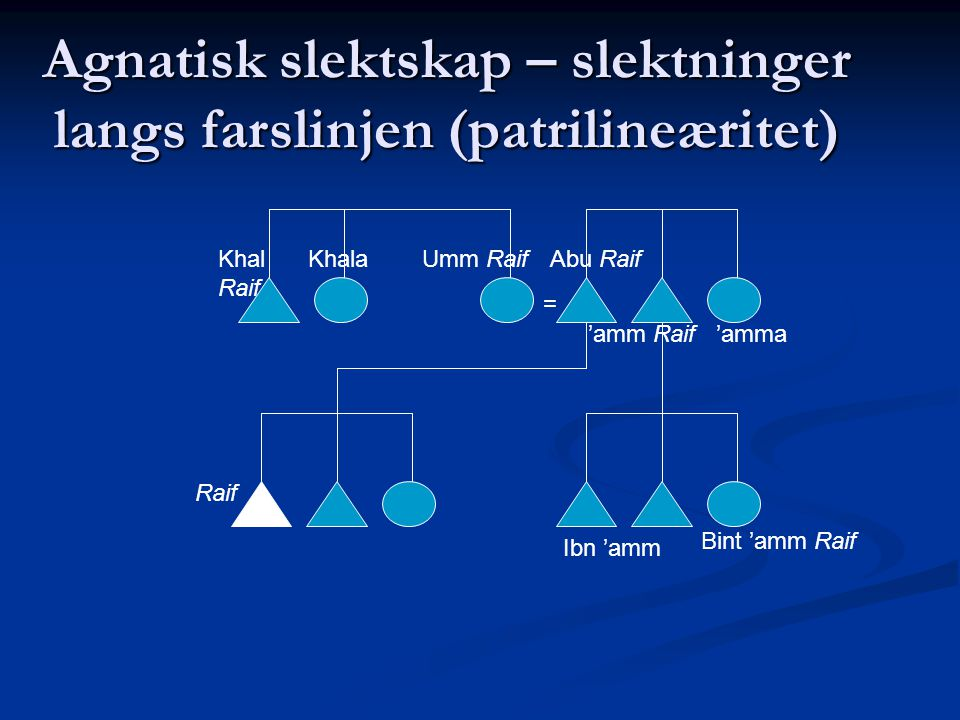 Agnatisk slektskap – slektninger langs farslinjen (patrilineæritet) = Raif Umm RaifAbu RaifKhal Raif Khala 'amm Raif'amma Ibn 'amm Bint 'amm Raif
