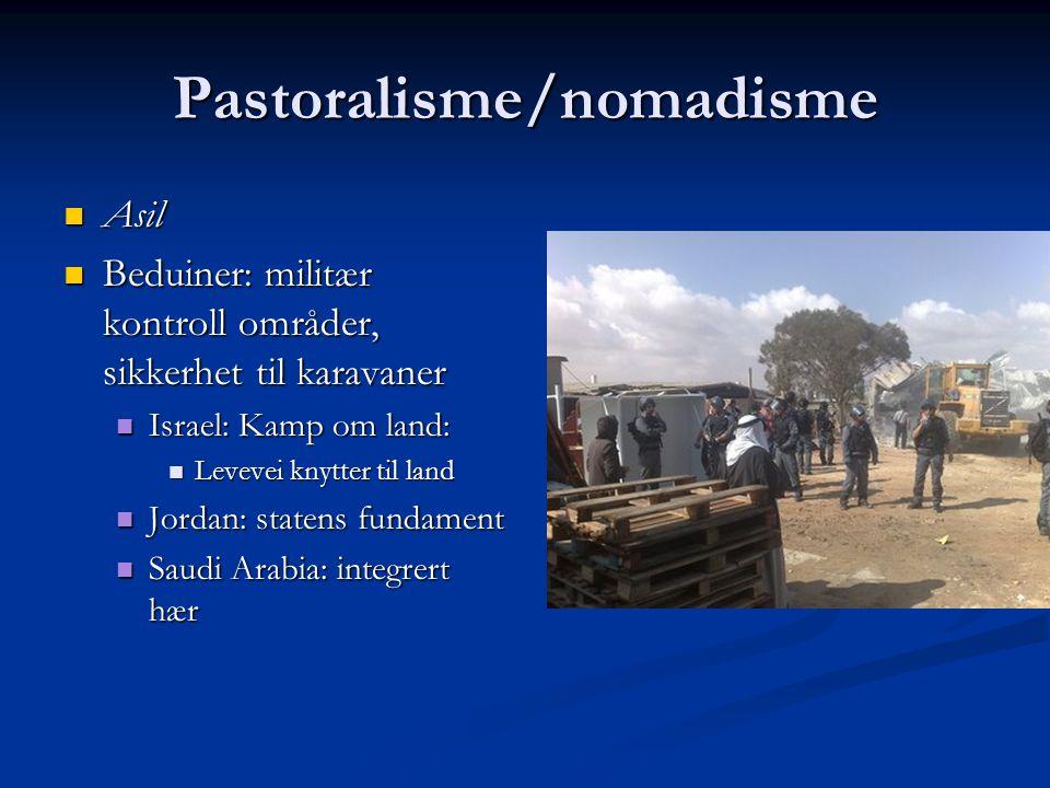 Pastoralisme/nomadisme Asil Asil Beduiner: militær kontroll områder, sikkerhet til karavaner Beduiner: militær kontroll områder, sikkerhet til karavan