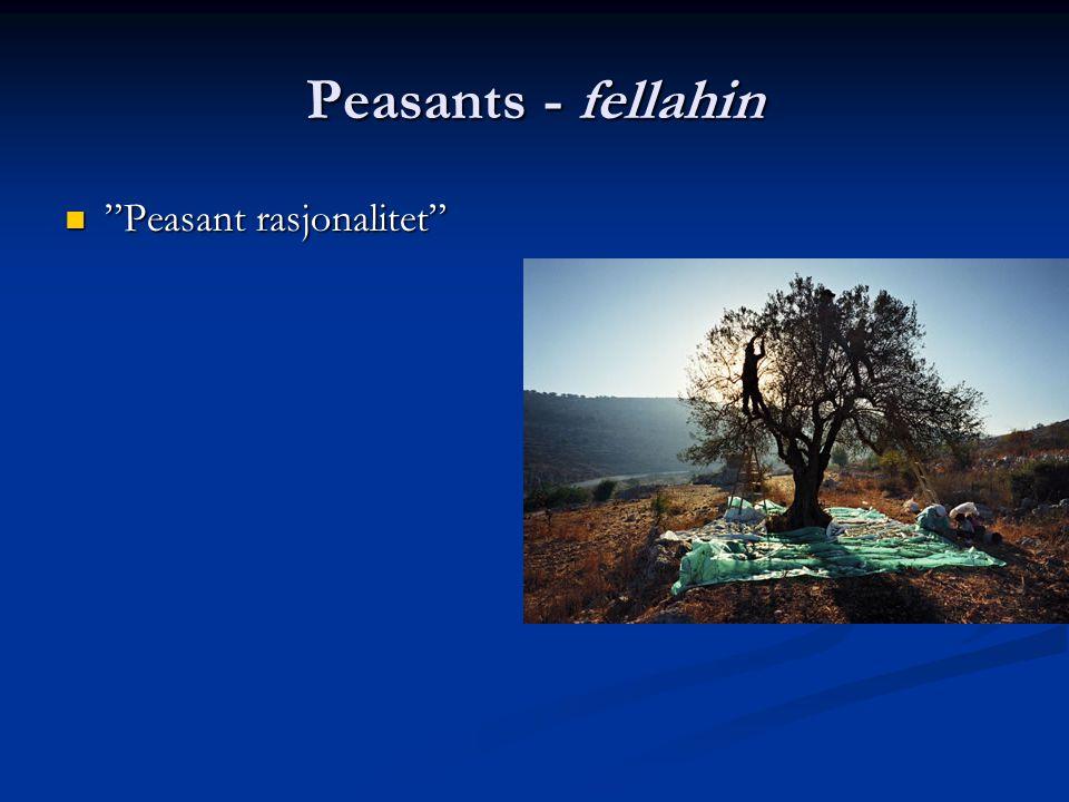 Peasants - fellahin Peasant rasjonalitet Peasant rasjonalitet