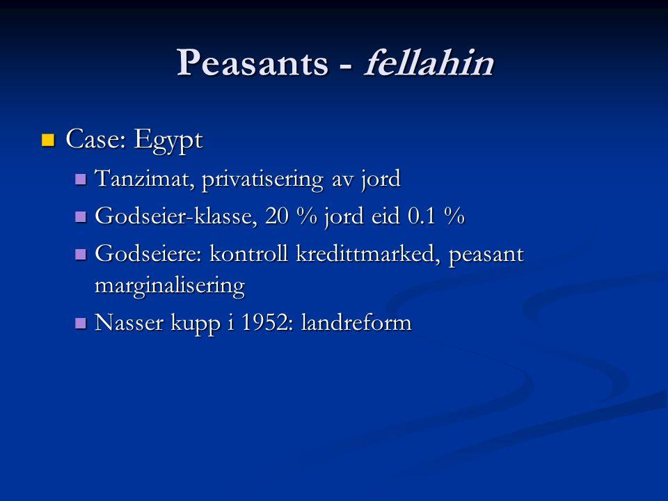 Peasants - fellahin Case: Egypt Case: Egypt Tanzimat, privatisering av jord Tanzimat, privatisering av jord Godseier-klasse, 20 % jord eid 0.1 % Godseier-klasse, 20 % jord eid 0.1 % Godseiere: kontroll kredittmarked, peasant marginalisering Godseiere: kontroll kredittmarked, peasant marginalisering Nasser kupp i 1952: landreform Nasser kupp i 1952: landreform