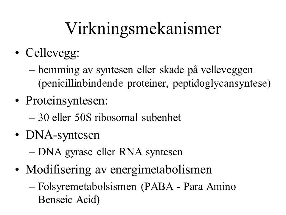 Virkningsmekanismer Cellevegg: –hemming av syntesen eller skade på velleveggen (penicillinbindende proteiner, peptidoglycansyntese) Proteinsyntesen: –30 eller 50S ribosomal subenhet DNA-syntesen –DNA gyrase eller RNA syntesen Modifisering av energimetabolismen –Folsyremetabolsismen (PABA - Para Amino Benseic Acid)