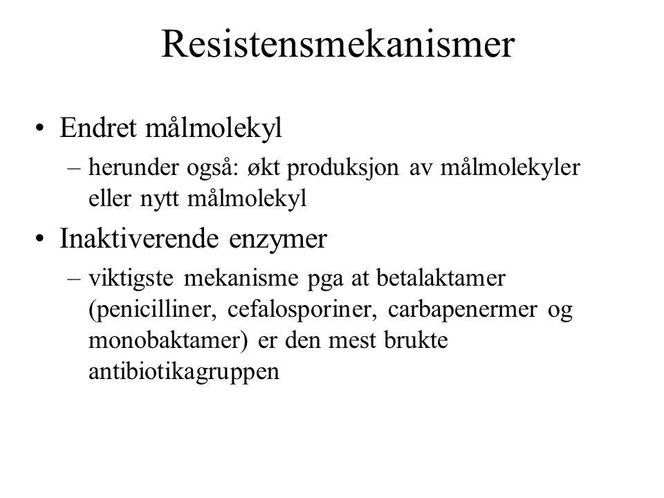 Resistensmekanismer Endret målmolekyl –herunder også: økt produksjon av målmolekyler eller nytt målmolekyl Inaktiverende enzymer –viktigste mekanisme pga at betalaktamer (penicilliner, cefalosporiner, carbapenermer og monobaktamer) er den mest brukte antibiotikagruppen