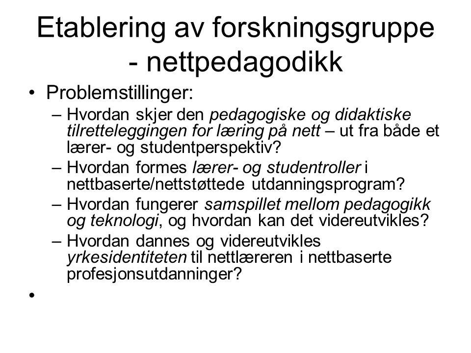 Etablering av forskningsgruppe - nettpedagodikk Problemstillinger: –Hvordan skjer den pedagogiske og didaktiske tilretteleggingen for læring på nett – ut fra både et lærer- og studentperspektiv.