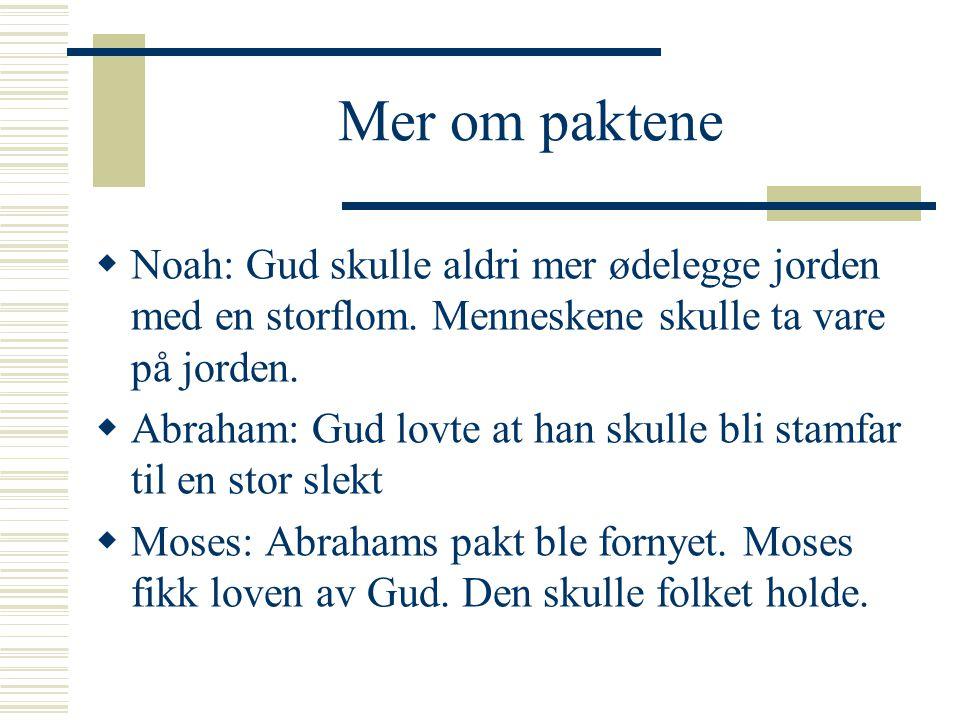 Mer om paktene  Noah: Gud skulle aldri mer ødelegge jorden med en storflom. Menneskene skulle ta vare på jorden.  Abraham: Gud lovte at han skulle b
